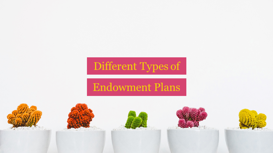 Different types of endowment plans